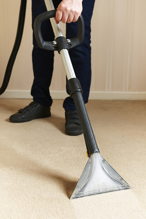 cleaning carpet